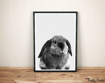 Bunny Rabbit Photography Print, Woodlands Nursery Art, Rabbit Wall Decor, Black and White Print, Printable Art, Bunny Print,Digital Download