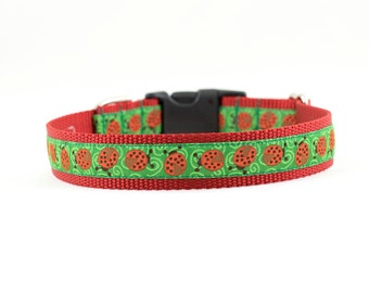 "Ladybug Dog Collar, Ladybugs Collar, Bug Dog Collar, Summer Dog Collar, Buckle Collar, Martingale Collar, 3/4"" or 1"""