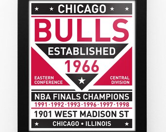 Chicago Bulls Dual Tone Modern Team Print Framed