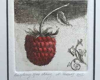 Raspberry. Original handpulled etching and watercolor.