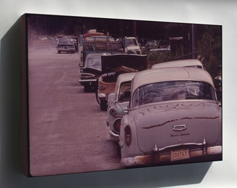 Canvas 16x24; Abandoned Automobiles Nara 546177