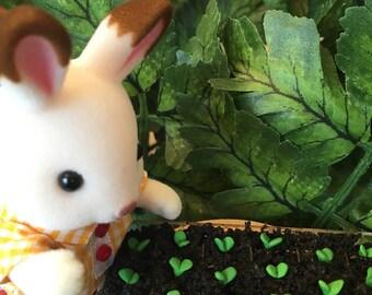 Seedling Tray for Fairy Garden