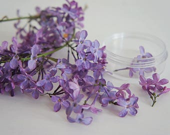 30 + Dried Lilac blossoms for resin jewelry, dry flower for glass orb filter, mini flower for craft, dried small flower for resin balls