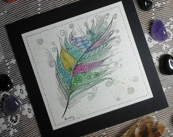 Feather illustration,zentangle feather,feather picture,art illustration,coloured feather,pen and ink,zentangle art