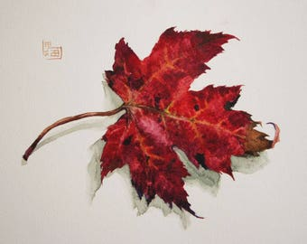 Original watercolor painting of a maple leaf.
