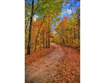 Autumn Country Road Impressionist Fine Art Giclee Print, Modern Wall Art Featuring Impressionist View of Rural Georgia Country Road
