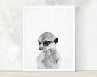 Suricate Print, Meerkat print, Baby shower gift, Printable Wall Art, Nursery Decor, Black and White Photography, kids room, art prints