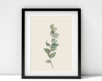 Botanical Photography, Nature Photography, Leaf, Leaves, Botanical Prints, Botanical Art, Leaf Photography, Minimalist, Nature Print, Branch