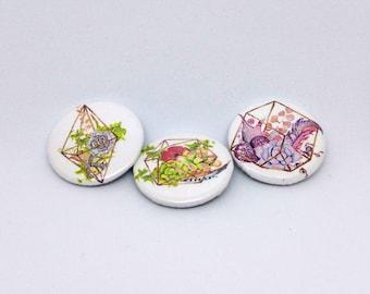 Flowers Succulent Terrarium Buttons - Gold Cage Bouquet Pinbacks - Set of Three Button Pack