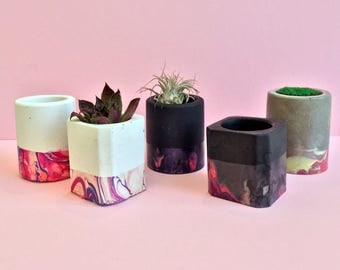 Mini Concrete Planters in Coral and Pink