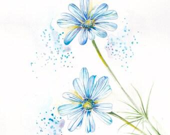 Blue daisy, watercolor print. Print of original watercolor painting.