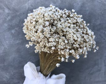 """Dried star flowers, Dried Flowers, Wedding flowers, Flower bouquets, Home decor 22"""" tall"""