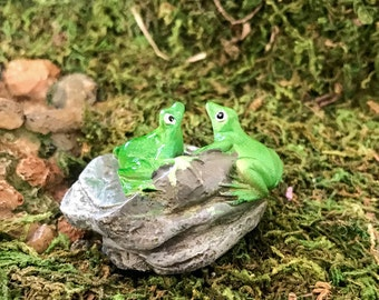Miniature Frogs on a Layered Stone