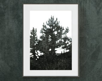 Pine Tree Drawing, Art Print, Silhouette, Black and White, Forest Print, Anniversary Gift, Art Wall Decor, Fine Art Paper, Gift for Man, A4