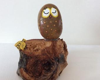 Sleeping owl with bee on log