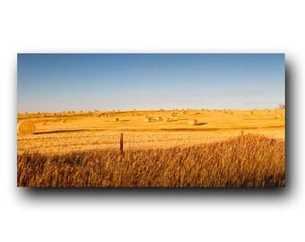 Autumn Prairies, Harvest Time, Golden Fields, Alberta, Fall, Alberta Prairies, Farming,Hay Bales,Fields,Landscape Photography,Wall Art,Decor