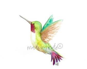 Watercolor Rainbow Hummingbird