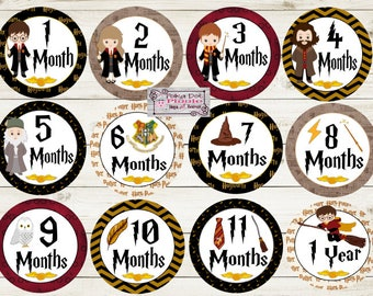 Wizard Kids Harry Potter Monthly Baby Milestone Stickers