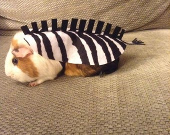 Guineapig costume zebra. Small pet costume. Cute unique handmade