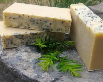 Cedarwood Orange Goats Milk Soap