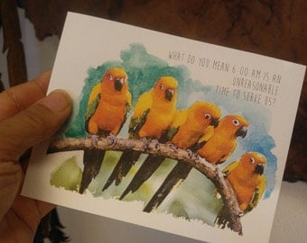 4x5 Sun Conure card with envelope. 6am Alarm.