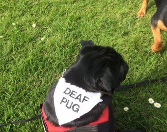 Deaf,Blind,nervous,Anxious dog bandana