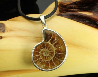 Ammonite Silver Necklace, Ammonite Fossil Sterling Silver Pendant, Sea Creature, Black Cord