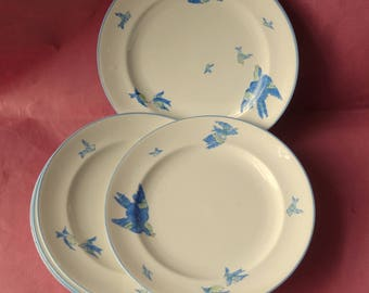 5 Heathcote Bone China Williamsons Blue  1920 -39 SidePlates Blue  Birds from a teaset