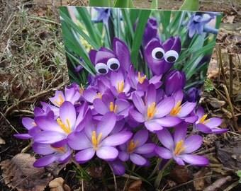 Postcard Eyes see you in spring