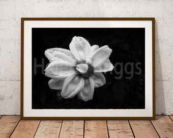 Flower Wall Art, Flower Wall Decor, Flower Wall Backdrop, Flower Print, Flower Power, Flower Photography, Flower Girl Gift, Flower Vintage