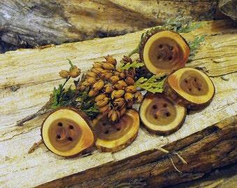 Natural Cedar Wooden Live Edge Branch Buttons