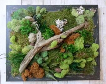 Preserved Moss Wall Art - 15 x 18 - Green Wall Art - Green Wall - Plant Painting - Vertical Garden - Moss Wall Decor - Preserved Plants