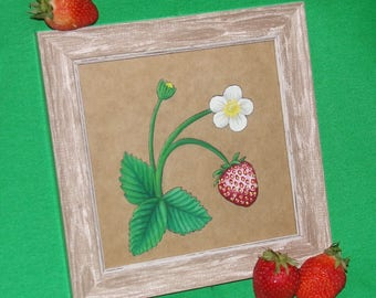 Framed Strawberry Plant Gouache Painting