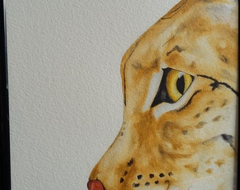 Lynx illustration - Original fine Art illustration.