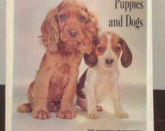 Walter Chandoha's Book of Puppies And Dogs