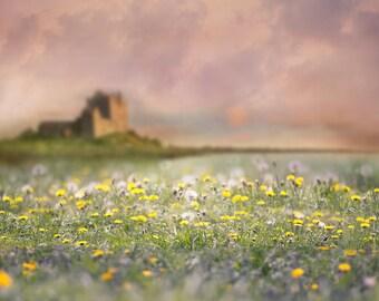 Castle digital background