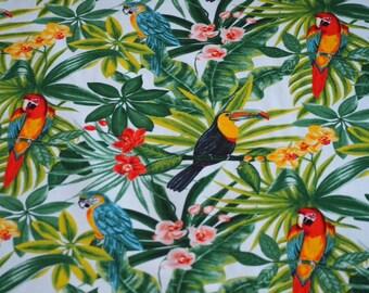 Exotic birds - width 140 or 280