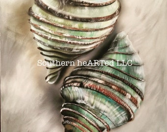 Seashell Art Prints