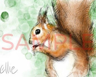 Squirrel drawing // squirrel art print // squirrel print // squirrel gift // forest nursery // animal nursery decor // woodland art