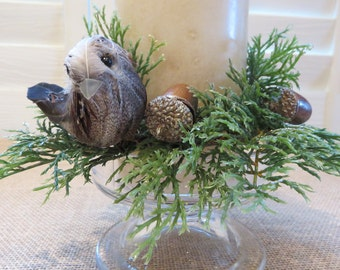 Candle ring  with feathered bird, blue pips, acorns and wintry greens. Spring sale price!