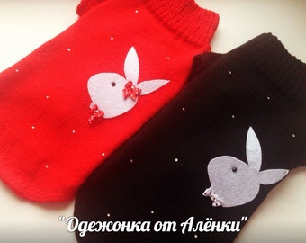 "sweater for dogs and cats  ""playboy bunny"""