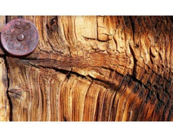 100% Pure Sandalwood Oil : Parfum De Sandal by Feel Oud. No synthetics, adulterants, carrier oils.
