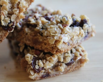 One Dozen Protein Candy Bars- Pecan Raisin Granola- Vegan, Vegetarian, Gluten Free, Sugar Free, Paleo, Clean Eating, Granola Bar