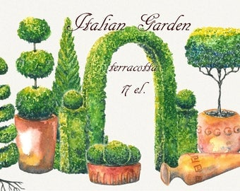 Tree clipart, topiary clipart, garden clipart, trees clipart, watercolor tree, italian clipart, Hand Painted, clip art, digital watercolor