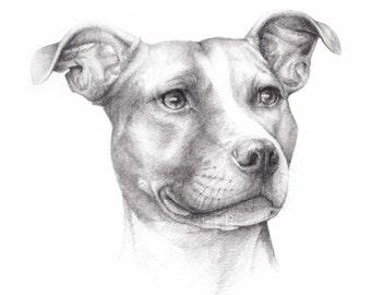 "Custom Pet Portrait Size 20 x 15cm (8"" x 6"")"