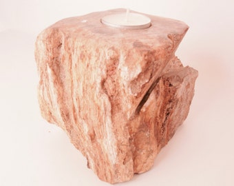 Fossilized Petrified Wood Candle Holder