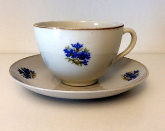 Czechoslovakia Tea Cup and Saucer