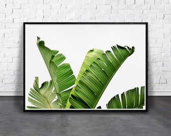 Tropical Plant Print, Palm Leaf Art, Banana Leaves Print, Palm Wall Art, Tropical Leaves, Printable Green, Palm Photography, Botanical Print
