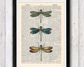 Dragonfly Art Print / Dragonfly Dictionary Page Book Print / Insect Wall Print / Insect Print / Vintage Dictionary Page Book Print