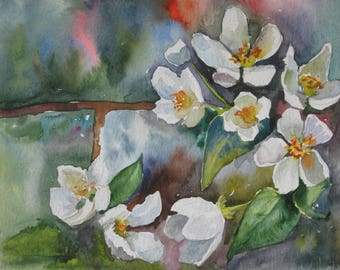 Original watercolor painting,Apple blossom, blossoming apple-trees, watercolor flowers